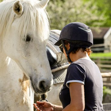 Mein Pferd und Ich